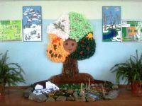 Поделки для уголка природы в детском саду своими руками 12
