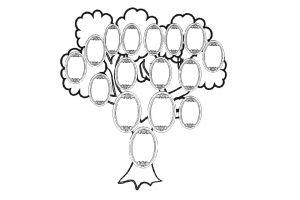 Як намалювати сімейне дерево?
