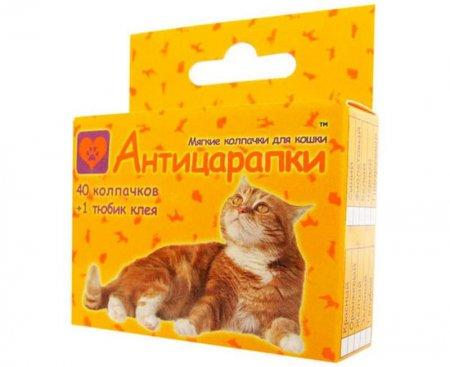Ковпачки на кігті кішкам: відгуки власників, думки ветеринарів, призначення і опис з фото